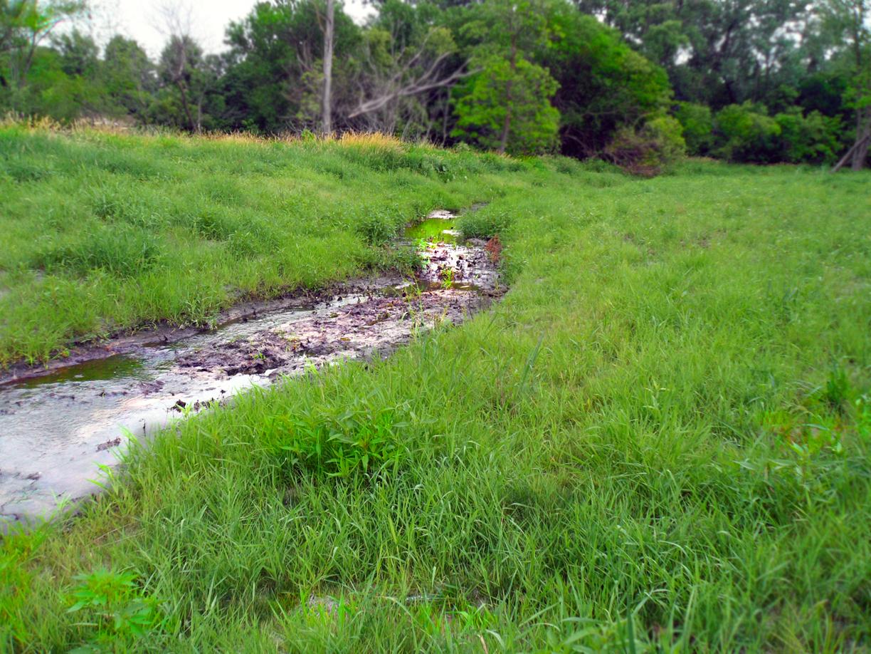 Usher's Creek Restoration- Hiawatha, Iowa