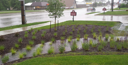 Rain garden during storm event- Wendy's- Cedar Rapids, IA
